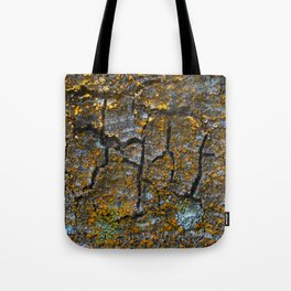 The identity of a tree Tote Bag