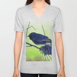 Territorial Display Unisex V-Neck