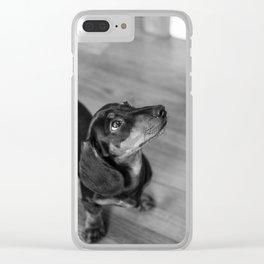 Weenie Dog Clear iPhone Case