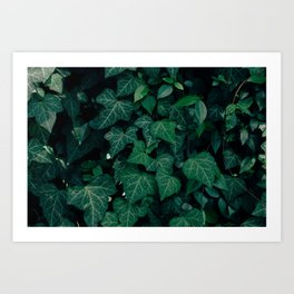 Forest of emotion Art Print