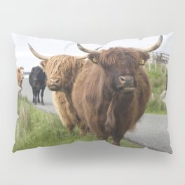 Highland cows on the Isle Pillow Sham