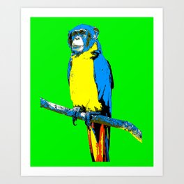 Parrot-Monkey Art Print