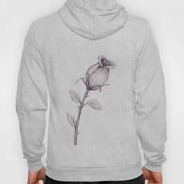 Budding Rose in Pencil Hoody