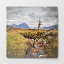 Lone Tree, Rannoch Moor, Scotland Metal Print