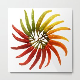 Chili Color Wheel Vector Metal Print