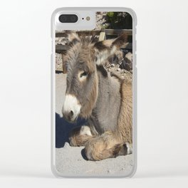 Donkey of Oatman Clear iPhone Case