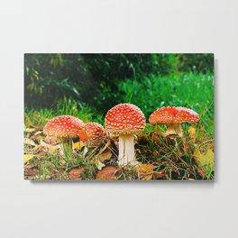 Magical Forest Mushroom II Metal Print