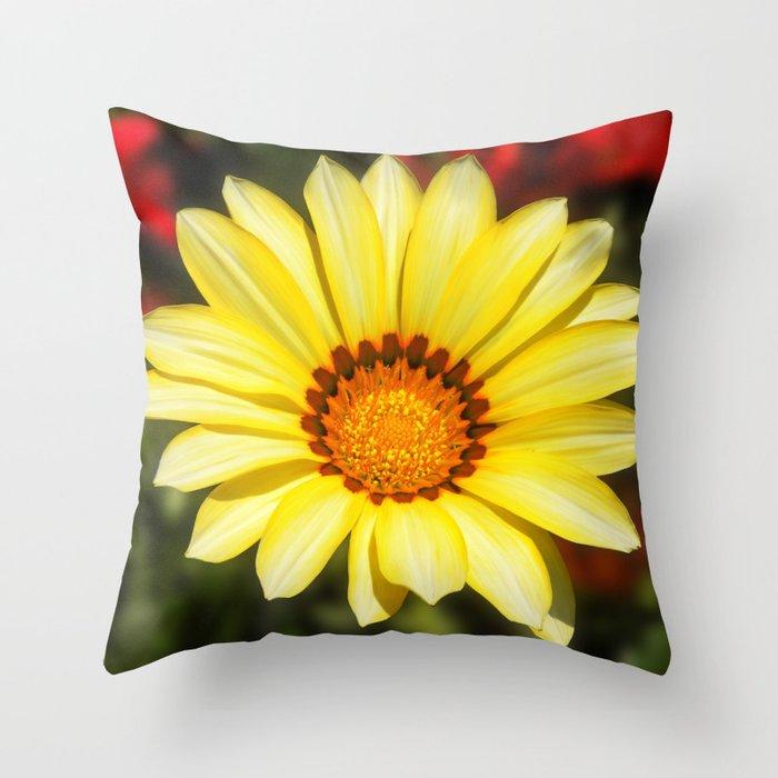 Yellow Sunny Spring Flower Gazania Throw Pillow