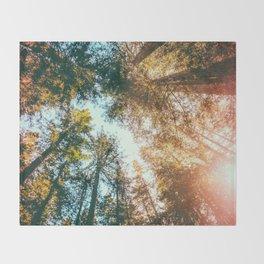 California Redwoods Sun-rays and Sky Throw Blanket
