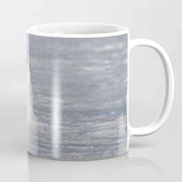 The Snow Queen Coffee Mug
