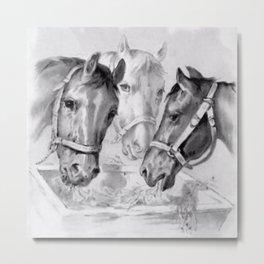 Horses Feeding Metal Print