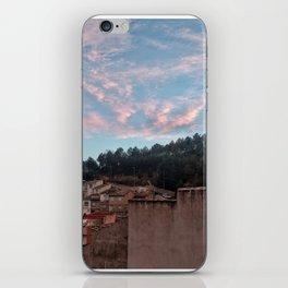 020 iPhone Skin