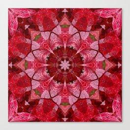 Cranberrybush Viburnum mandala Canvas Print