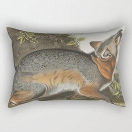 Vintage Illustration of a Grey Fox (1843) Rectangular Pillow