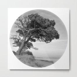 Desert Island Disc Metal Print