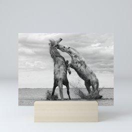 Wild Horses - Ocracoke Island, Hatteras, North Carolina black and white photograph / art photography Mini Art Print