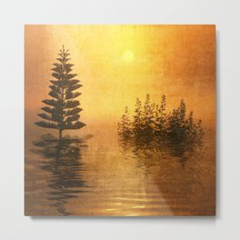 Landscape Reflection Metal Print