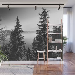 Mountain Lake Forest Black and White Nature Photography Wall Mural