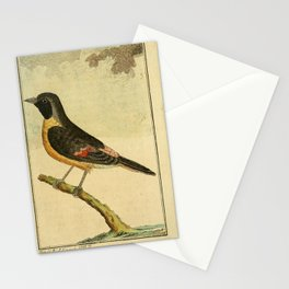 Malabar tit2 Stationery Cards