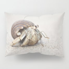 Life & times of a Hermit Crab Pillow Sham