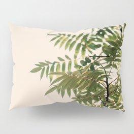 New Growth Pillow Sham