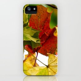 autumn leaves by Janina iPhone Case