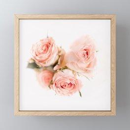 Rose pink lemonade Framed Mini Art Print
