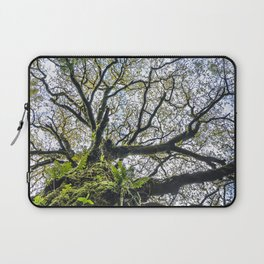 Centenary oak with the trunk covered in moss and green plants Laptop Sleeve