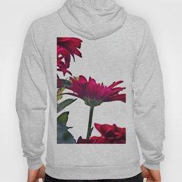 Red Chrysanthemum Flowers Hoody