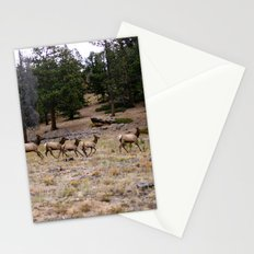 Colorado, wildlife Stationery Cards