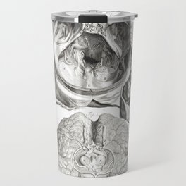 Human Anatomy Art Print CEREBELLUM CERVICAL SPINE Vintage Anatomy, doctor medical art, Antique Book Travel Mug
