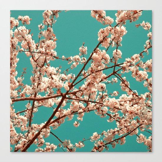 spring tree XVII Canvas Print