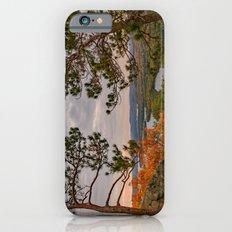 Eagle cliff pines iPhone 6s Slim Case