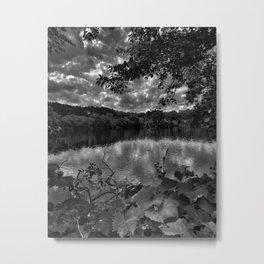 fresh pond reservation Metal Print