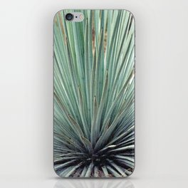 Agave Plant iPhone Skin
