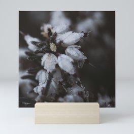 Snowdrop Mini Art Print