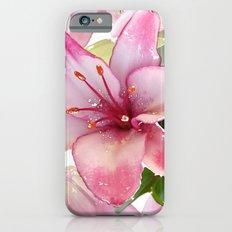 Pink Lilies Slim Case iPhone 6