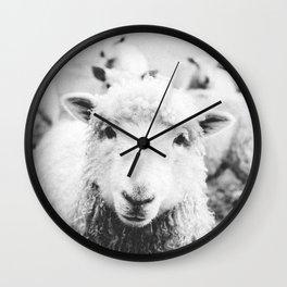 SHEEP III / Ireland Wall Clock