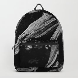 Stand Your Ground Backpack