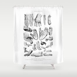 Primate Hands and Feet Shower Curtain