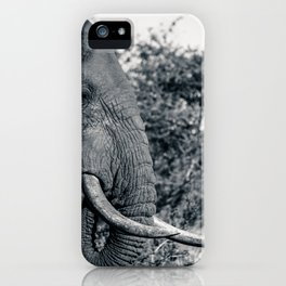 Hindsight iPhone Case