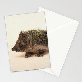 Little Ones: Hedgehog Stationery Cards