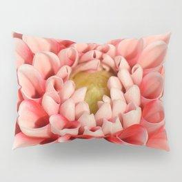 Dahlia 71 Pillow Sham
