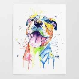 Pit Bull, Pitbull Watercolor Painting - The Softer Side Poster