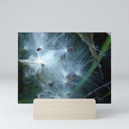 Milkweed Seeds Float Mini Art Print