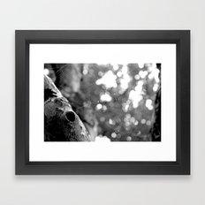 Catcher  Framed Art Print