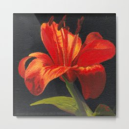 Orange lily flower Metal Print