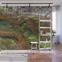 Mountain lake full of color and details Wall Mural