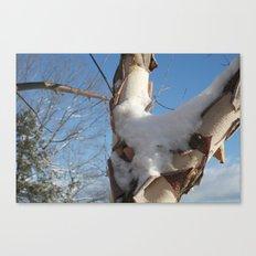 Snowy Sky Canvas Print