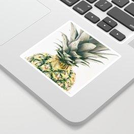 Pineapple Close-Up Sticker